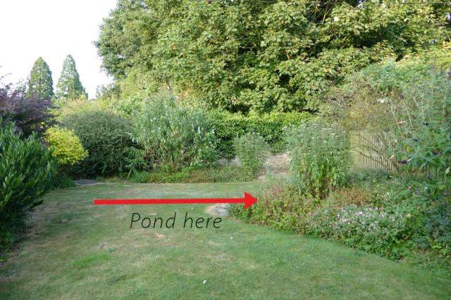 Pond 1 FB